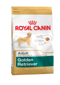 Golden Retriever Adult Голден Ретривер Эдалт